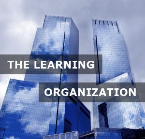 Learning Organization: che cos'è e come deve essere costruita